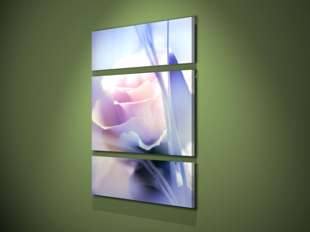 Доставка цветов саратов юлия фловерс